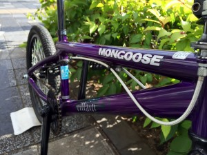mongoose002
