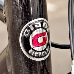 2014 GIANT TRADIST S (4)